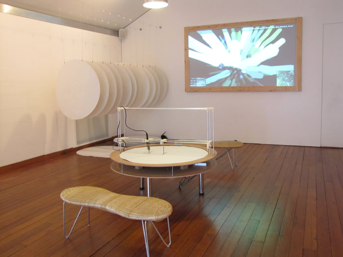 exhibition at ccanw, bench, climate machine, hanging sheets and live projection of a Mango Tree in the Mata Altantica