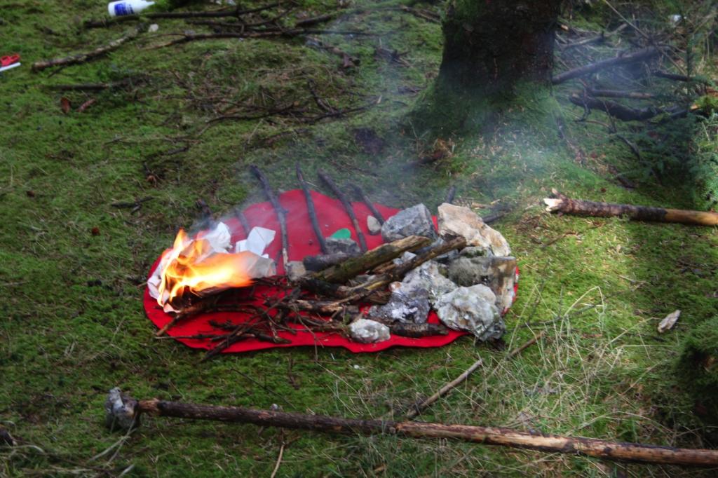representing temperature in Haldon Forest